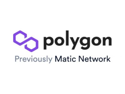 polygon beginner's guide | matic review